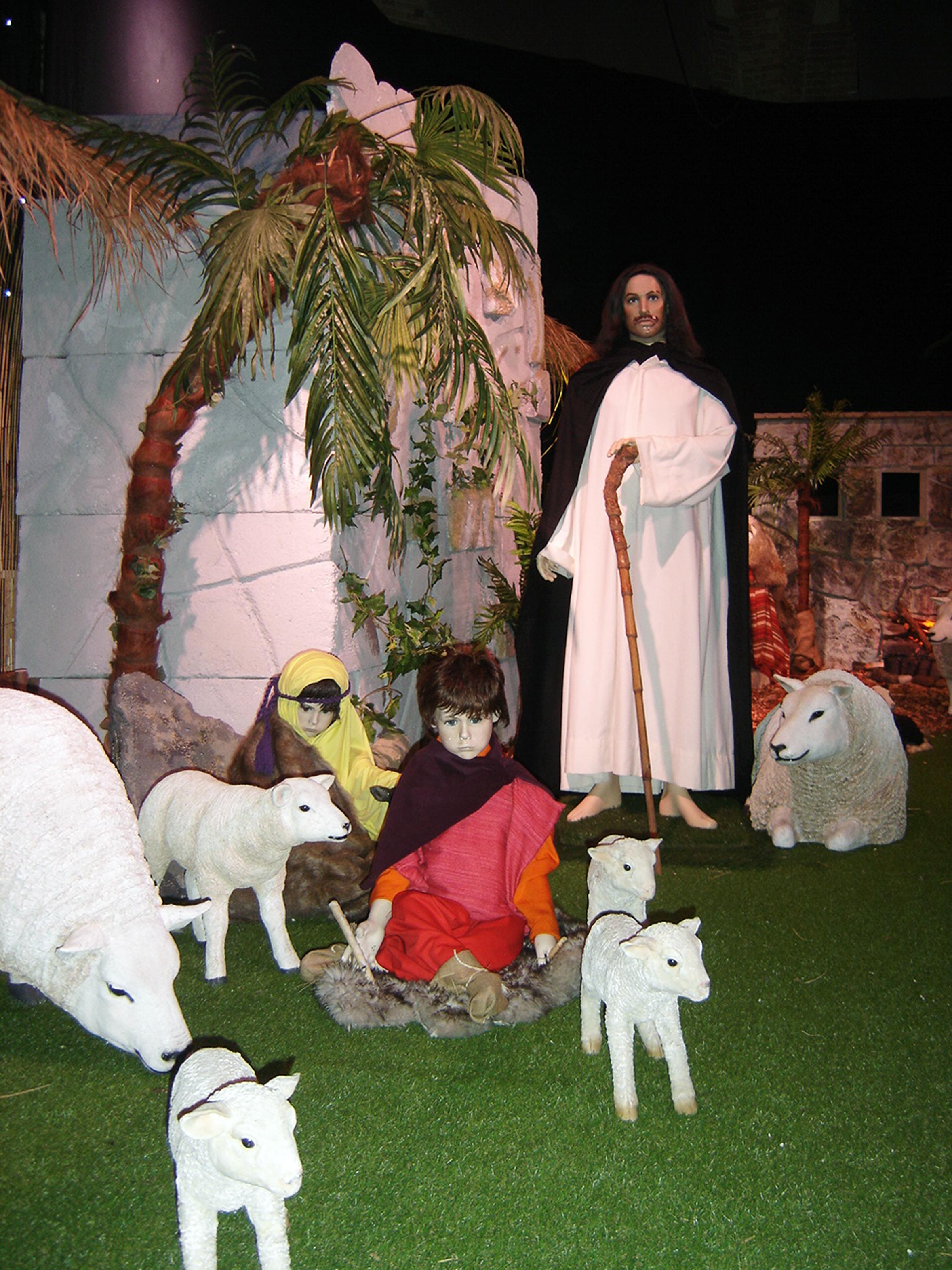 Kind speelt met de schapen